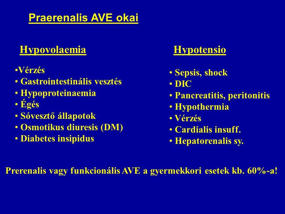 Praerenalis AVE okai Hypovolaemia Vérzés Gastrointestinális vesztés Hypoproteinaemia Égés Sóvesztő állapotok Osmotikus diuresis (DM) Diabetes insipidus Hypotensio Sepsis, shock DIC Pancreatitis, peritonitis Hypothermia Vérzés Cardialis insuff.