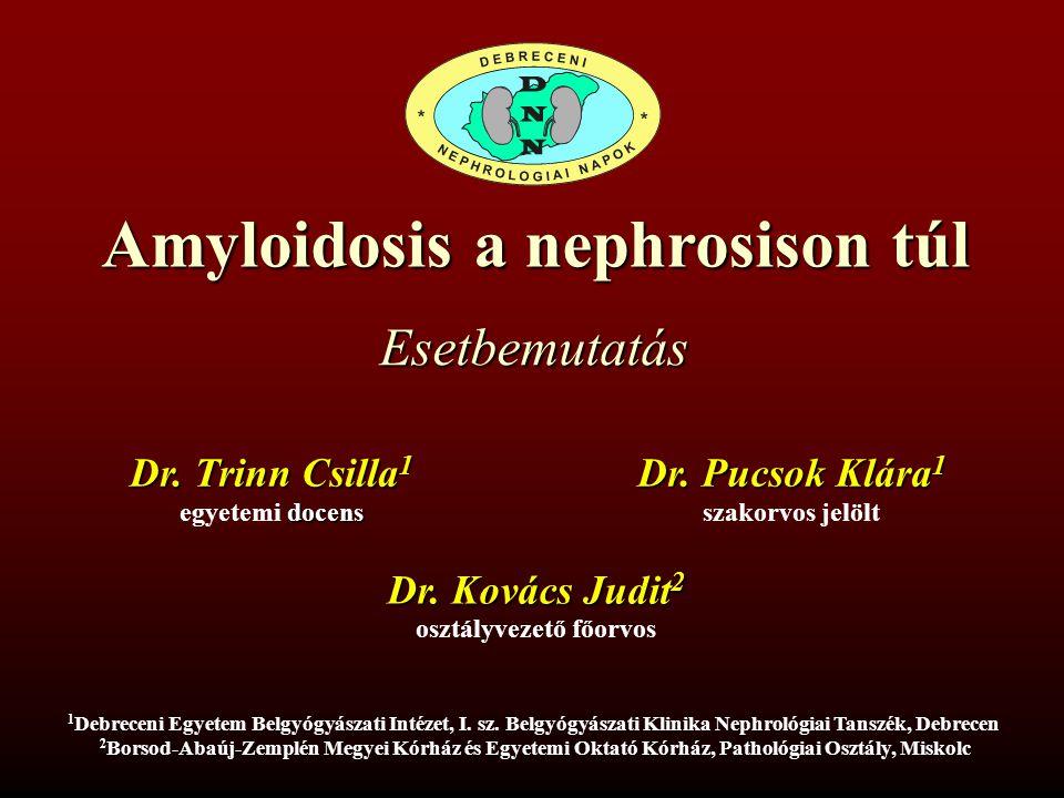 Amyloidosis a nephrosison túl Esetbemutatás Dr. Trinn Csilla 1 1 1 Debreceni Egyetem Belgyógyászati Intézet, I. sz. Belgyógyászati Klinika Nephrológia