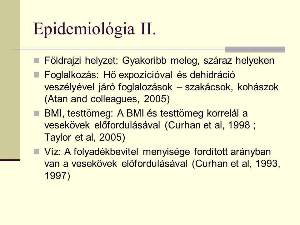 Epidemiológia II. Földrajzi helyzet: Gyakoribb meleg, száraz helyeken Foglalkozás: Hő expozícióval és dehidráció veszélyével járó foglalozások – szaká