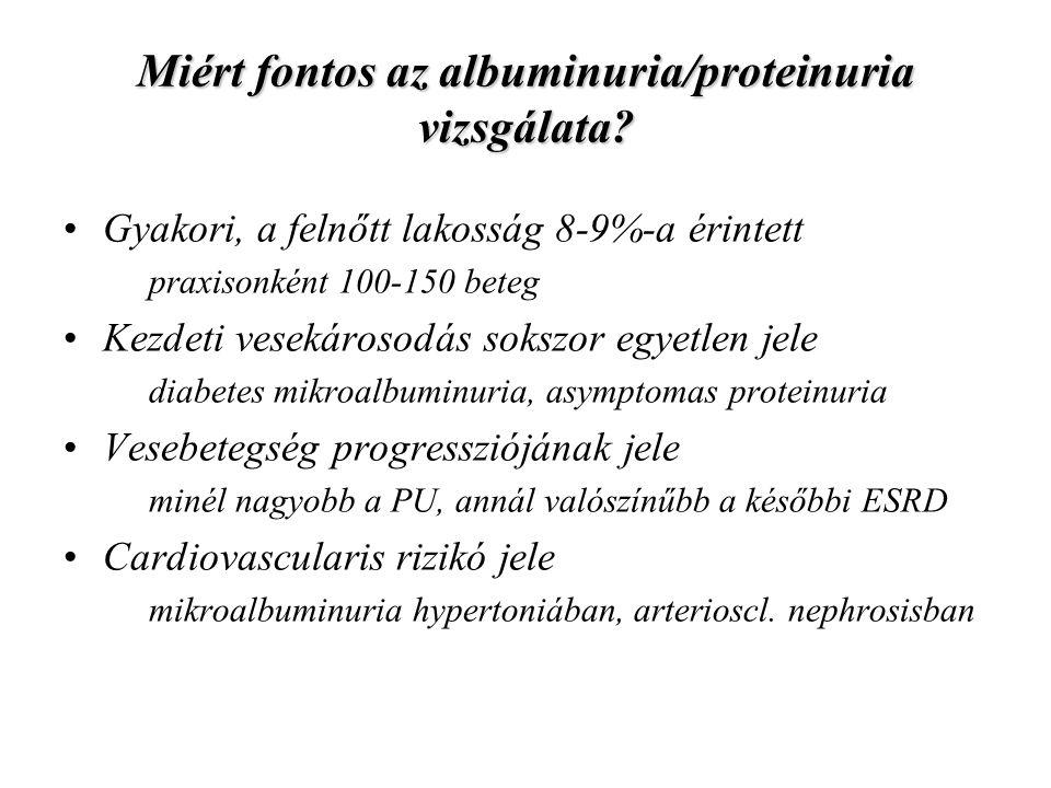 Miért fontos az albuminuria/proteinuria vizsgálata? Gyakori, a felnőtt lakosság 8-9%-a érintett praxisonként 100-150 beteg Kezdeti vesekárosodás soksz