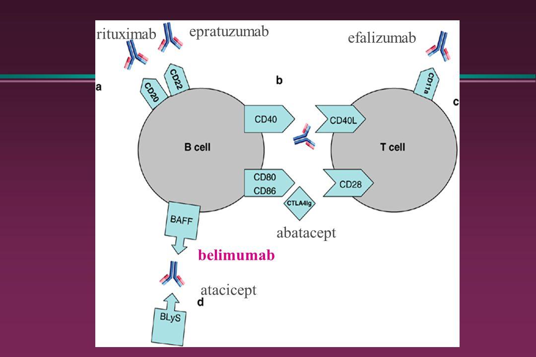 rituximab epratuzumab efalizumab belimumab abatacept atacicept