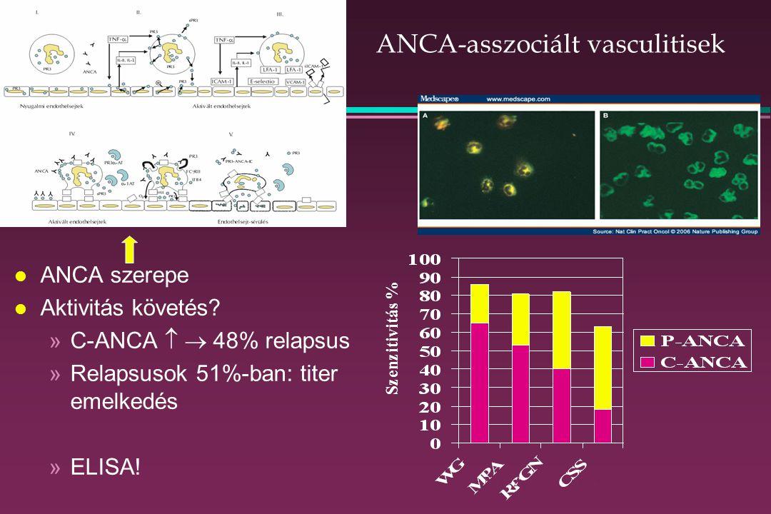 ANCA-asszociált vasculitisek l ANCA szerepe l Aktivitás követés.