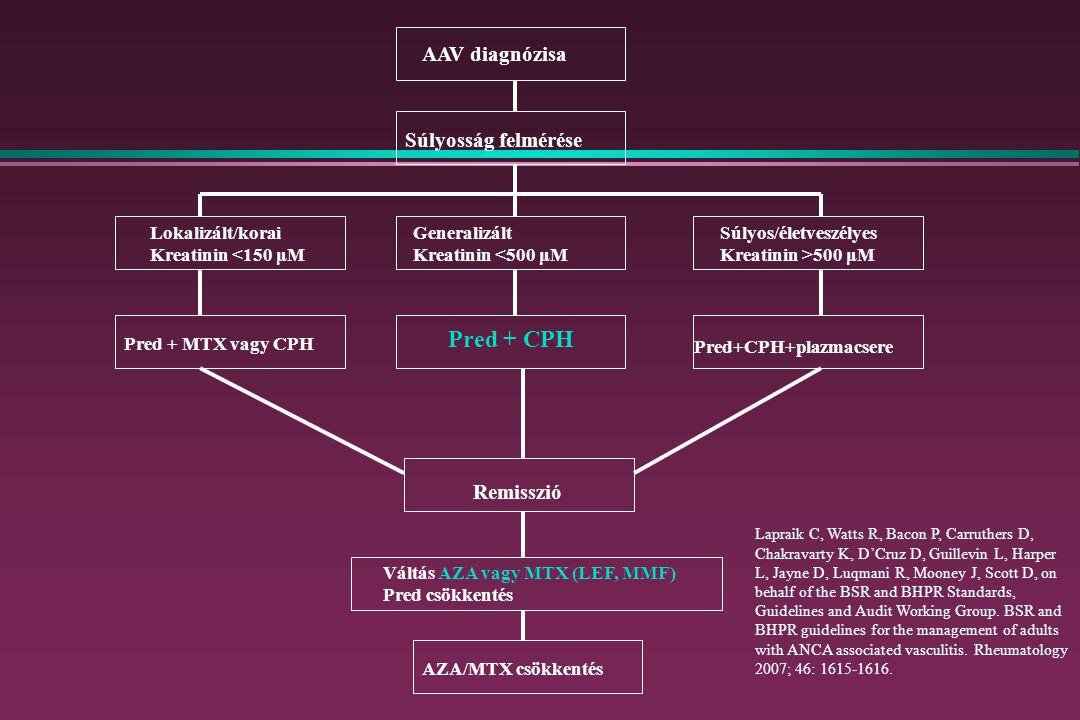 AAV diagnózisa Súlyosság felmérése Pred + CPH Pred+CPH+plazmacsere Lokalizált/korai Kreatinin <150 μM Pred + MTX vagy CPH Remisszió Váltás AZA vagy MTX (LEF, MMF) Pred csökkentés AZA/MTX csökkentés Generalizált Kreatinin <500 μM Súlyos/életveszélyes Kreatinin >500 μM Lapraik C, Watts R, Bacon P, Carruthers D, Chakravarty K, D'Cruz D, Guillevin L, Harper L, Jayne D, Luqmani R, Mooney J, Scott D, on behalf of the BSR and BHPR Standards, Guidelines and Audit Working Group.