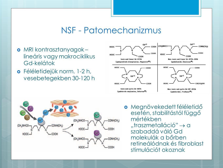 NSF - Patomechanizmus  MRI kontrasztanyagok – lineáris vagy makrociklikus Gd-kelátok  Féléletidejük norm. 1-2 h, vesebetegekben 30-120 h  Megnöveke
