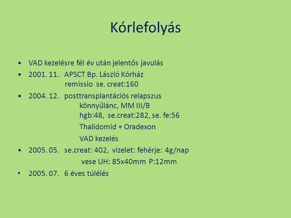 Kórlefolyás VAD kezelésre fél év után jelentős javulás 2001. 11. APSCT Bp. László Kórház remissio se. creat:160 2004. 12. posttransplantációs relapszu