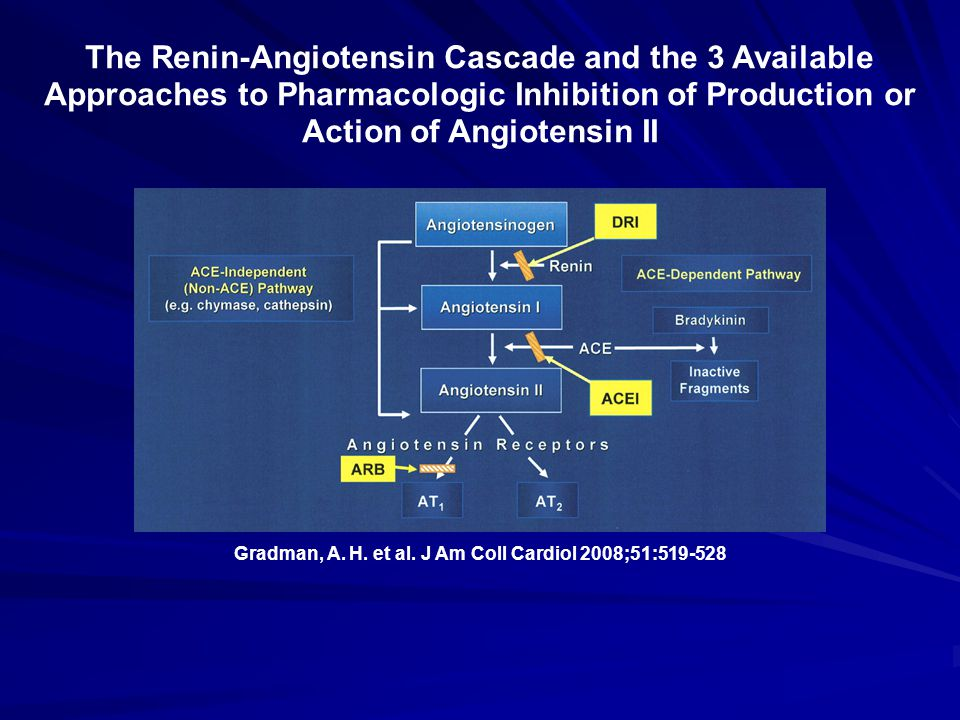 Gradman, A. H. et al. J Am Coll Cardiol 2008;51:519-528 The Renin-Angiotensin Cascade and the 3 Available Approaches to Pharmacologic Inhibition of Pr