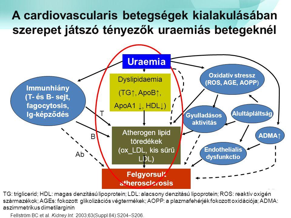 A cardiovascularis betegségek kialakulásában szerepet játszó tényezők uraemiás betegeknél TG: triglicerid; HDL: magas denzitású lipoprotein; LDL: alac