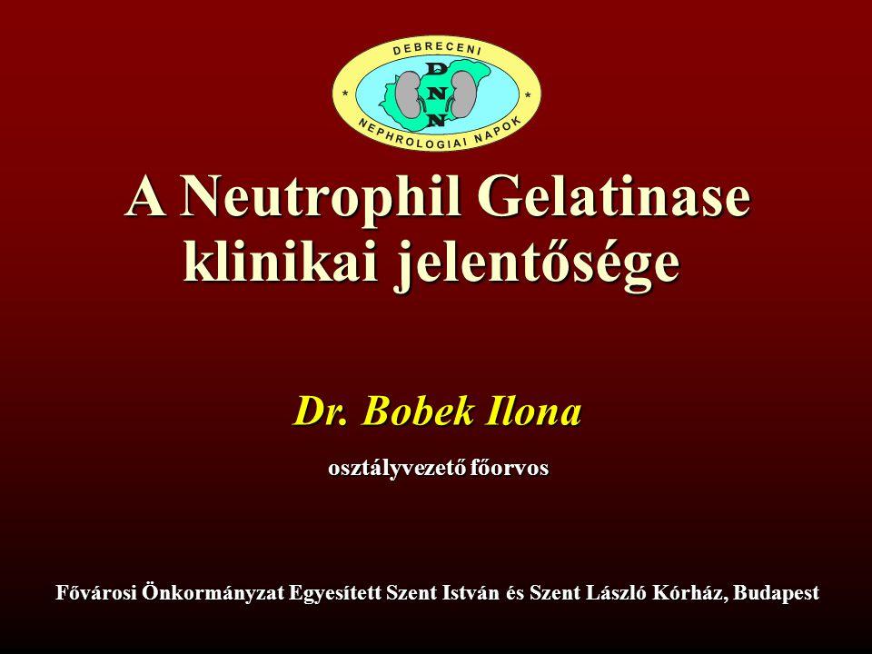 A Neutrophil Gelatinase klinikai jelentősége Fővárosi Önkormányzat Egyesített Szent István és Szent László Kórház, Budapest Dr. Bobek Ilona osztályvez