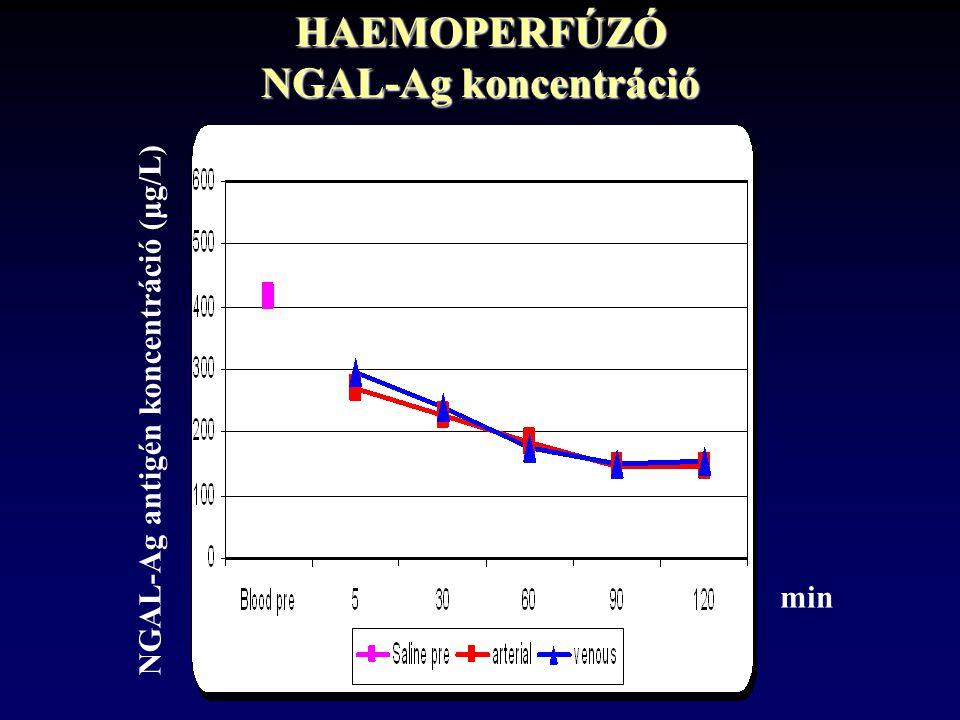 HAEMOPERFÚZÓ NGAL-Ag koncentráció NGAL-Ag antigén koncentráció (μg/L) min