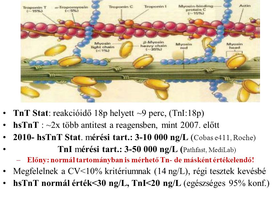 TnT Stat: reakcióidő 18p helyett ~9 perc, (TnI:18p) hsTnT : ~2x több antitest a reagensben, mint 2007. előtt 2010- hsTnT Stat. mérési tart.: 3-10 000
