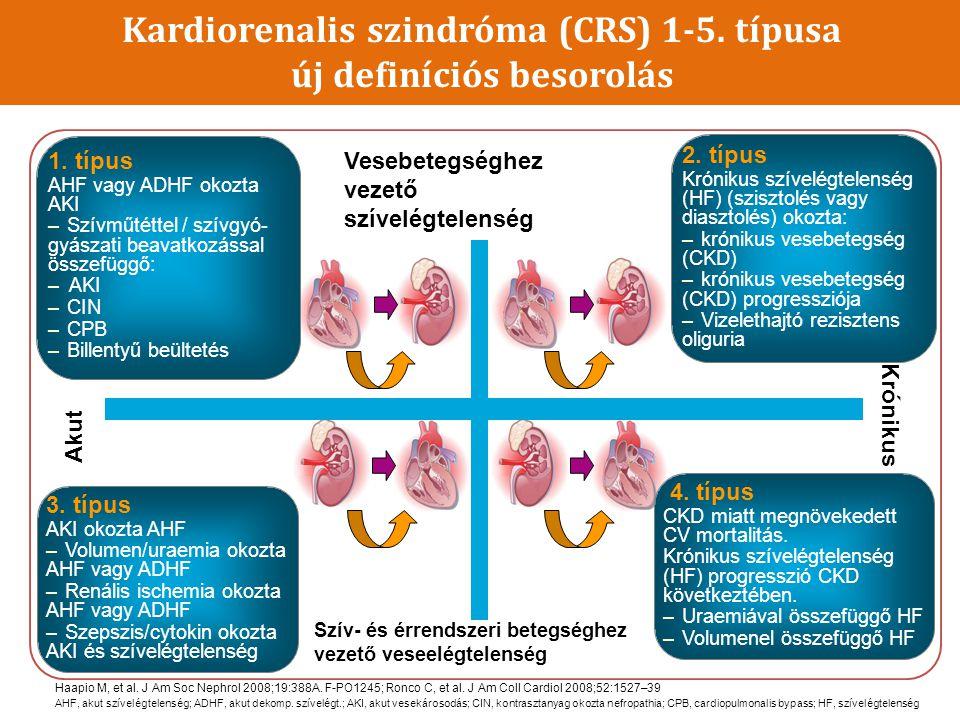 A 4-es típusú CRS jellemzője az elsődleges CKD, amely hozzájárul a csökkent szívműködés, a bal kamra hypertrophia, diasztolés dysfunctio kialakulásához és/vagy a nemkívánatos cardiovascularis események kockázatának növekedéséhez BMI, testtömeg index; EPO, erythropoietin; LDL, kis sűrűségű lipoprotein Ronco C, et al.