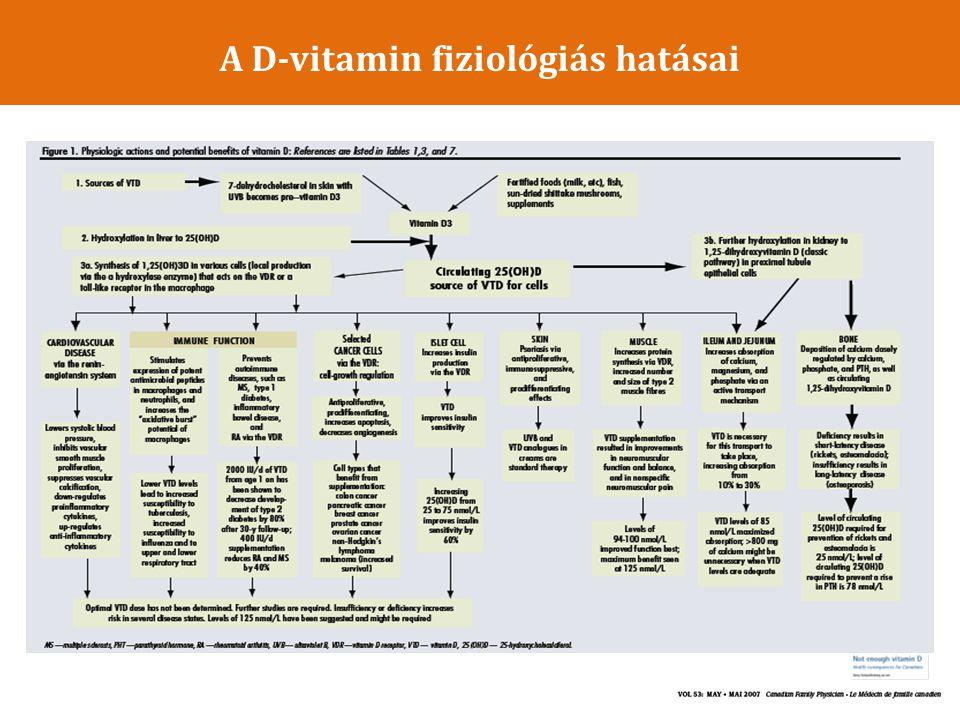 Következtetések az állatkísérletekből A szelektív VDR aktivátor, parikalcitol jelentősen csökkentette azokat az – anatómiai – funkcionális – biokémiai – molekuláris és – genetikai elváltozásokat, amelyek a cardialis hypertrophiára és dysfunctióra jellemzőek, DSS patkány modellben.