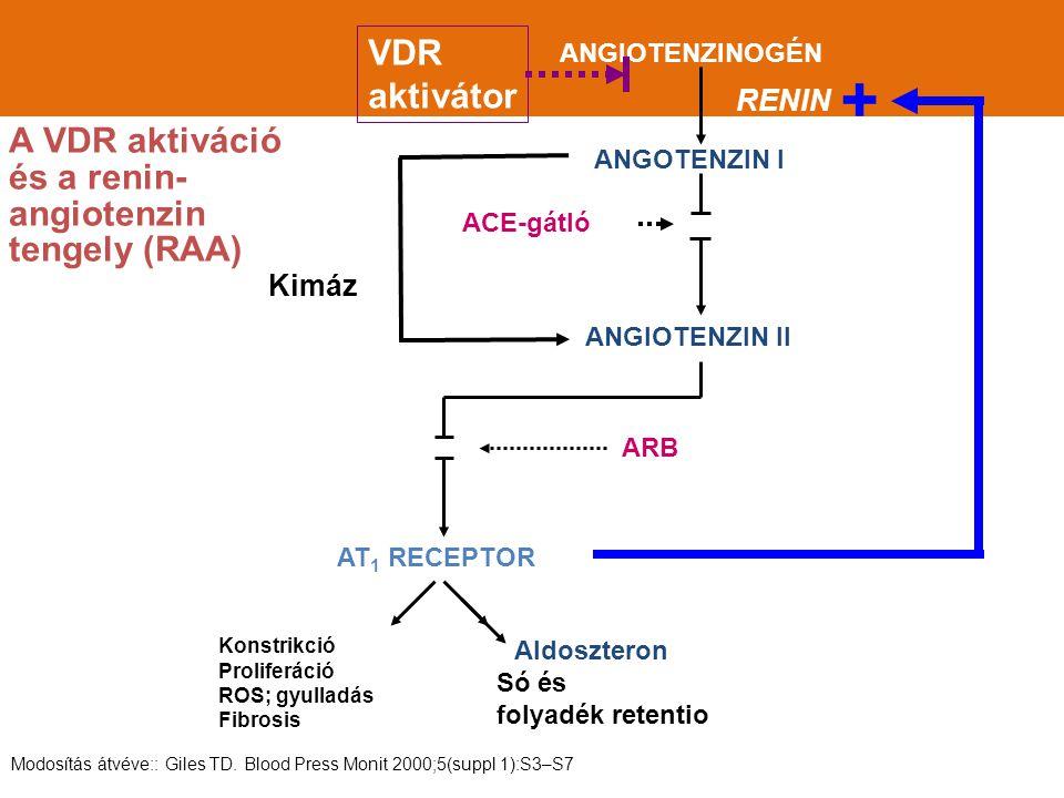 Az érelmeszesedés mechanizmusa és a szelektív VDR aktivátorok lehetséges prevenciós hatása Forrás: Giachelli CM.