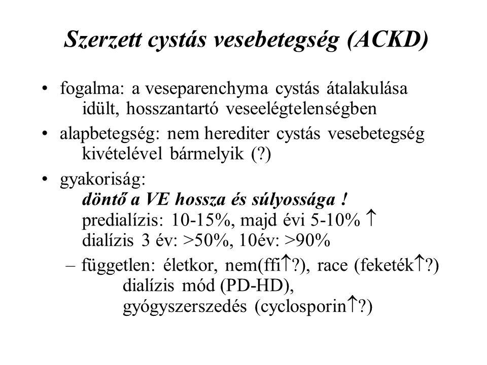 Szerzett cystás vesebetegség (ACKD) fogalma: a veseparenchyma cystás átalakulása idült, hosszantartó veseelégtelenségben alapbetegség: nem herediter cystás vesebetegség kivételével bármelyik (?) gyakoriság: döntő a VE hossza és súlyossága .