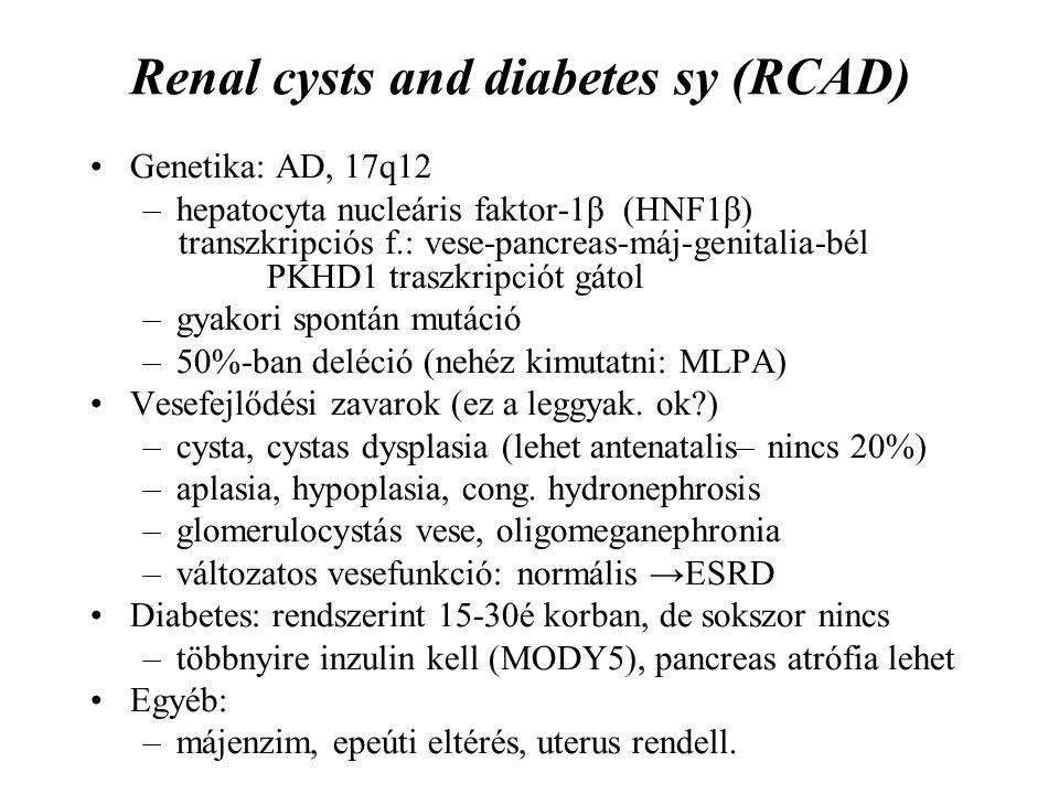 Renal cysts and diabetes sy (RCAD) Genetika: AD, 17q12 –hepatocyta nucleáris faktor-1β (HNF1β) transzkripciós f.: vese-pancreas-máj-genitalia-bél PKHD1 traszkripciót gátol –gyakori spontán mutáció –50%-ban deléció (nehéz kimutatni: MLPA) Vesefejlődési zavarok (ez a leggyak.