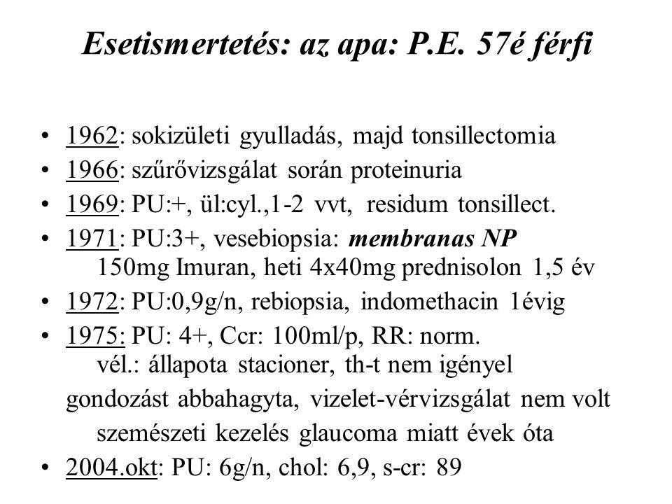 Esetismertetés: az apa: P.E. 57é férfi 1962: sokizületi gyulladás, majd tonsillectomia 1966: szűrővizsgálat során proteinuria 1969: PU:+, ül:cyl.,1-2