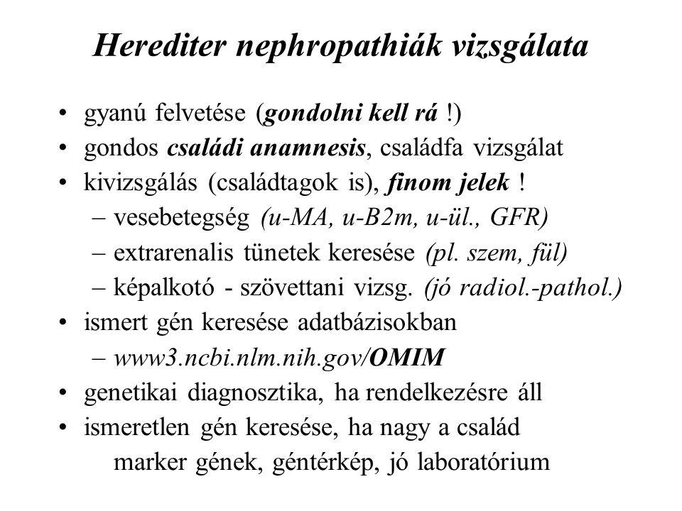 Herediter nephropathiák vizsgálata gyanú felvetése (gondolni kell rá !) gondos családi anamnesis, családfa vizsgálat kivizsgálás (családtagok is), fin