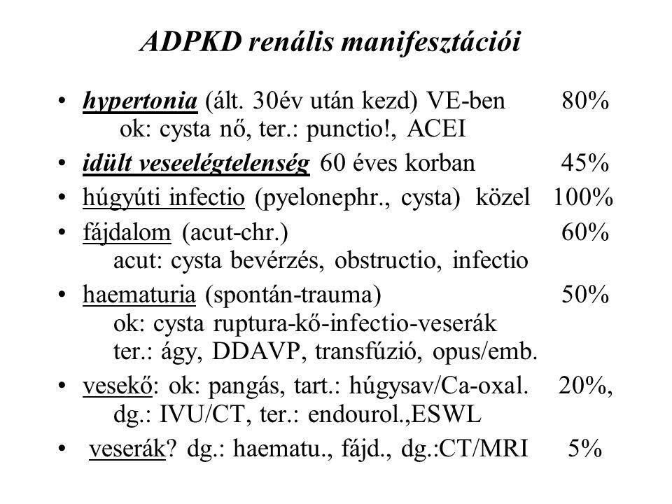 ADPKD renális manifesztációi hypertonia (ált. 30év után kezd) VE-ben 80% ok: cysta nő, ter.: punctio!, ACEI idült veseelégtelenség 60 éves korban45% h