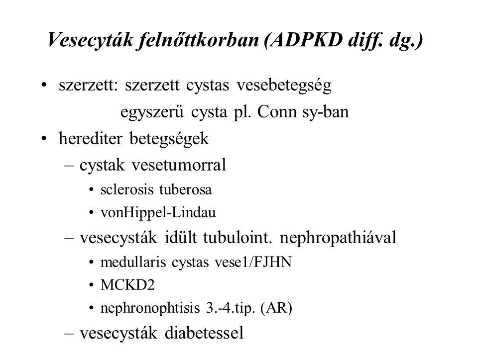 Vesecyták felnőttkorban (ADPKD diff. dg.) szerzett: szerzett cystas vesebetegség egyszerű cysta pl. Conn sy-ban herediter betegségek –cystak vesetumor
