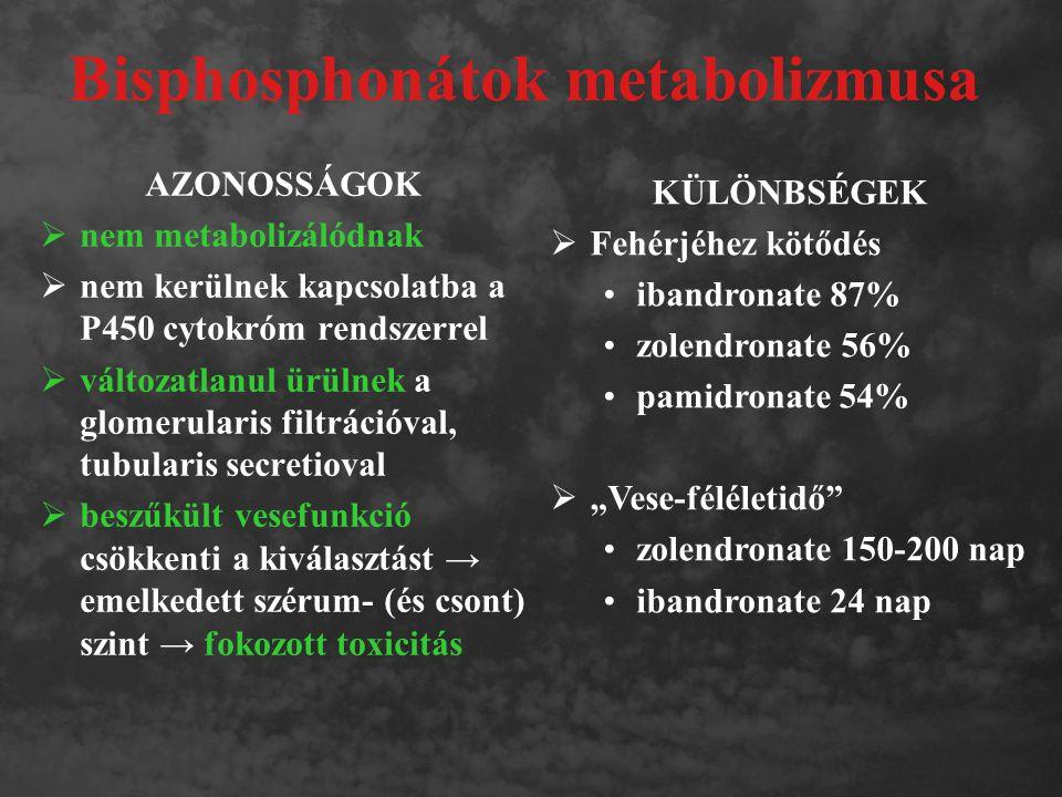 Bisphosphonátok metabolizmusa AZONOSSÁGOK  nem metabolizálódnak  nem kerülnek kapcsolatba a P450 cytokróm rendszerrel  változatlanul ürülnek a glom