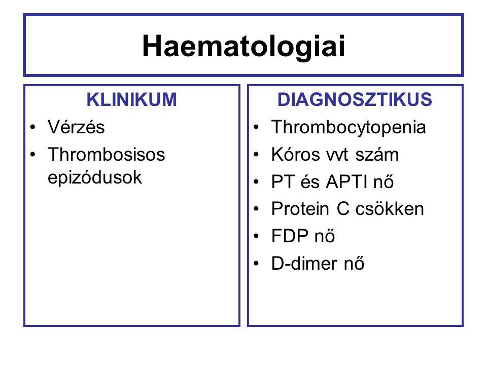 Haematologiai KLINIKUM Vérzés Thrombosisos epizódusok DIAGNOSZTIKUS Thrombocytopenia Kóros vvt szám PT és APTI nő Protein C csökken FDP nő D-dimer nő