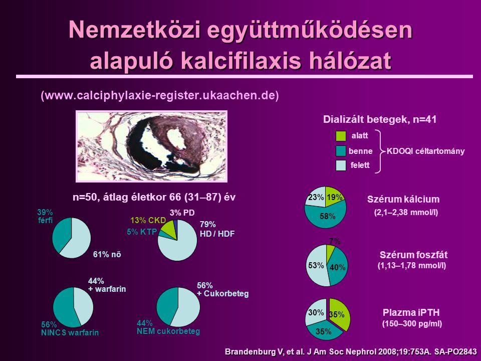 Nemzetközi együttműködésen alapuló kalcifilaxis hálózat (www.calciphylaxie-register.ukaachen.de) Dializált betegek, n=41 alatt benne felett KDOQI célt