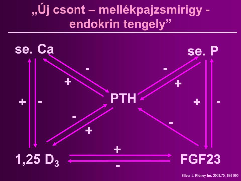 """""""Új csont – mellékpajzsmirigy - endokrin tengely"""" PTH se. Ca se. P 1,25 D 3 FGF23 + + + + + + - - - - - - Silver J, Kidney Int. 2009.75, 898-905 -"""