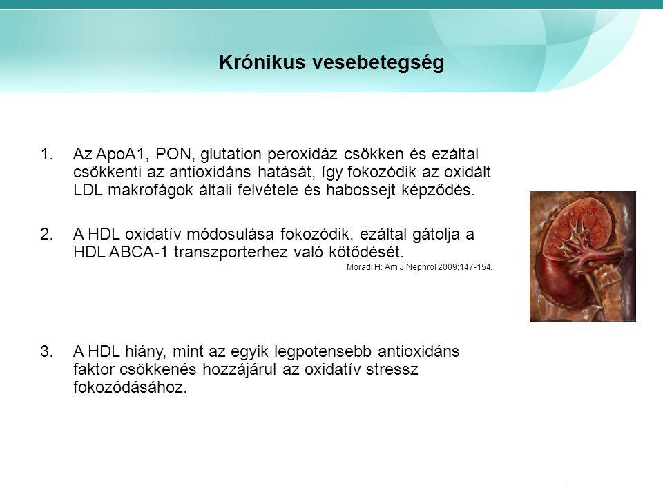 Krónikus vesebetegség 1.Az ApoA1, PON, glutation peroxidáz csökken és ezáltal csökkenti az antioxidáns hatását, így fokozódik az oxidált LDL makrofágo