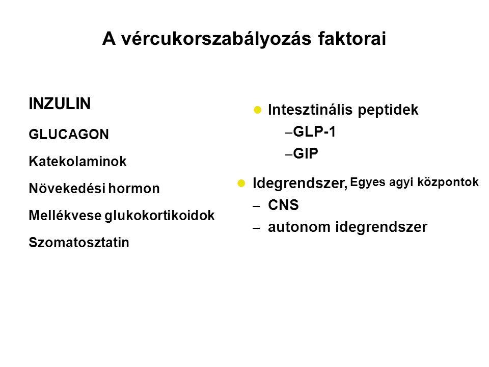 INZULIN GLUCAGON Katekolaminok Növekedési hormon Mellékvese glukokortikoidok Szomatosztatin Intesztinális peptidek – GLP-1 – GIP Idegrendszer, – CNS –