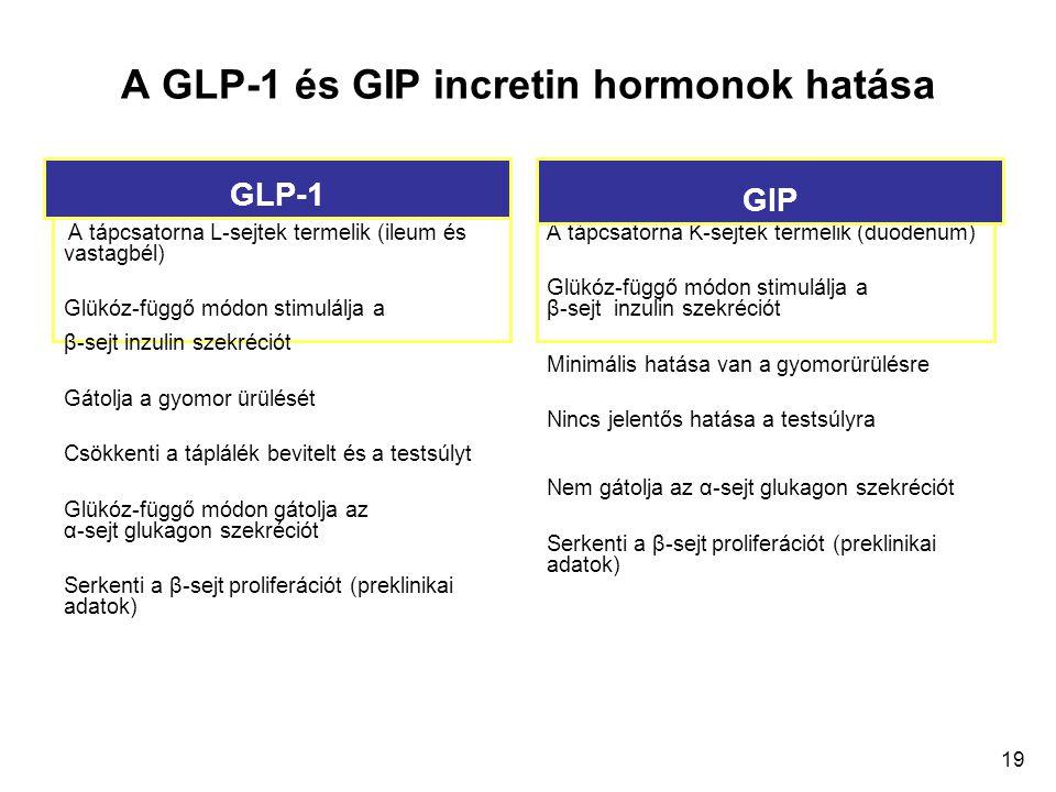 19 A GLP-1 és GIP incretin hormonok hatása A tápcsatorna L-sejtek termelik (ileum és vastagbél) Glükóz-függő módon stimulálja a β-sejt inzulin szekréc
