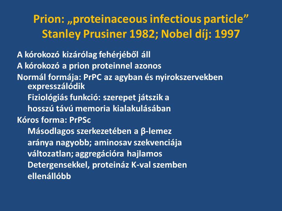 """Prion: """"proteinaceous infectious particle Stanley Prusiner 1982; Nobel díj: 1997 A kórokozó kizárólag fehérjéből áll A kórokozó a prion proteinnel azonos Normál formája: PrPC az agyban és nyirokszervekben expresszálódik Fiziológiás funkció: szerepet játszik a hosszú távú memoria kialakulásában Kóros forma: PrPSc Másodlagos szerkezetében a β-lemez aránya nagyobb; aminosav szekvenciája változatlan; aggregációra hajlamos Detergensekkel, proteináz K-val szemben ellenállóbb"""
