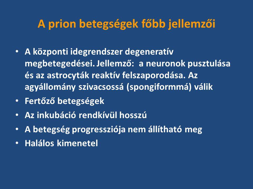 PrPSc a prion betegségek kórokozója A lerakódott PrPSc mennyisége általában arányos a szövetek infektivitásával A PrP toxikus a neuronokra A PrP génnel nem rendelkező transzgenikus egerek nem fertőzhetők meg prion betegséggel In vitro szintetizált PrP fragmentum képes prion betegség létrehozására fogékony transzgenikus egérben (Stanley Prusiner, 2004)