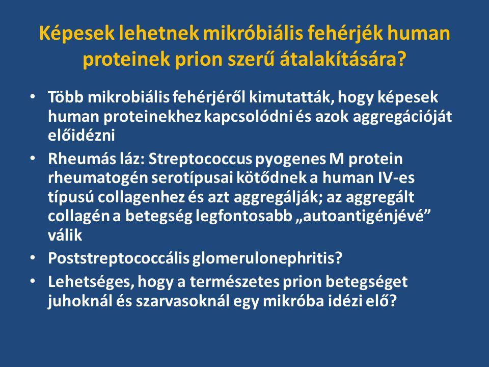 Képesek lehetnek mikróbiális fehérjék human proteinek prion szerű átalakítására.