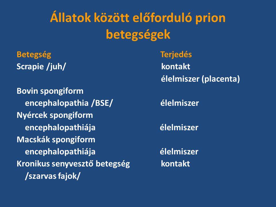 Állatok között előforduló prion betegségek Betegség Terjedés Scrapie /juh/ kontakt élelmiszer (placenta) Bovin spongiform encephalopathia /BSE/ élelmiszer Nyércek spongiform encephalopathiája élelmiszer Macskák spongiform encephalopathiája élelmiszer Kronikus senyvesztő betegség kontakt /szarvas fajok/