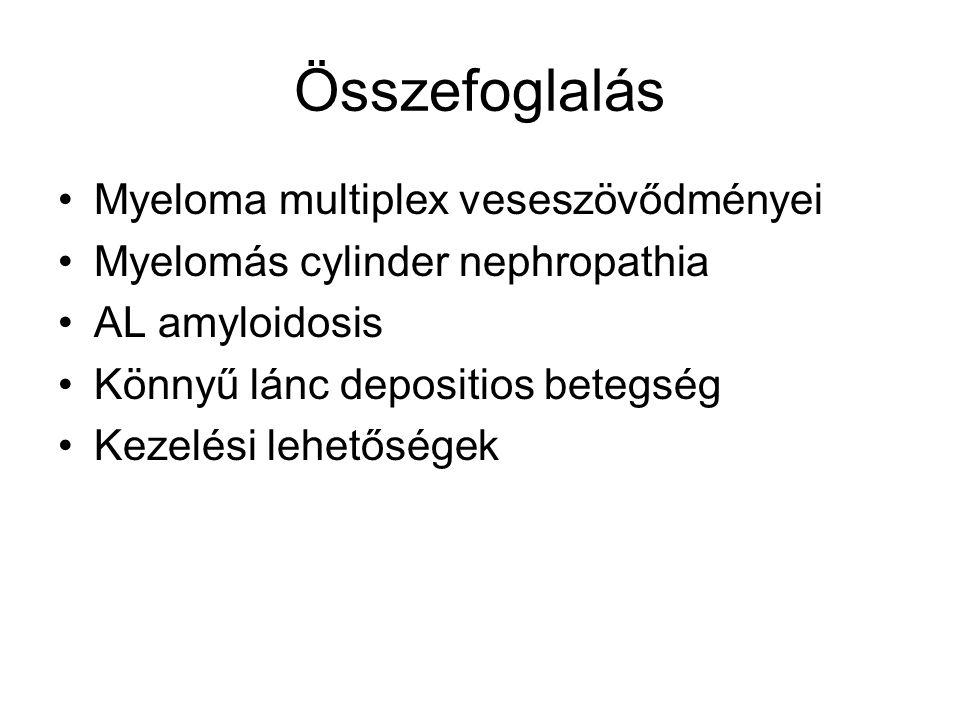 Összefoglalás Myeloma multiplex veseszövődményei Myelomás cylinder nephropathia AL amyloidosis Könnyű lánc depositios betegség Kezelési lehetőségek