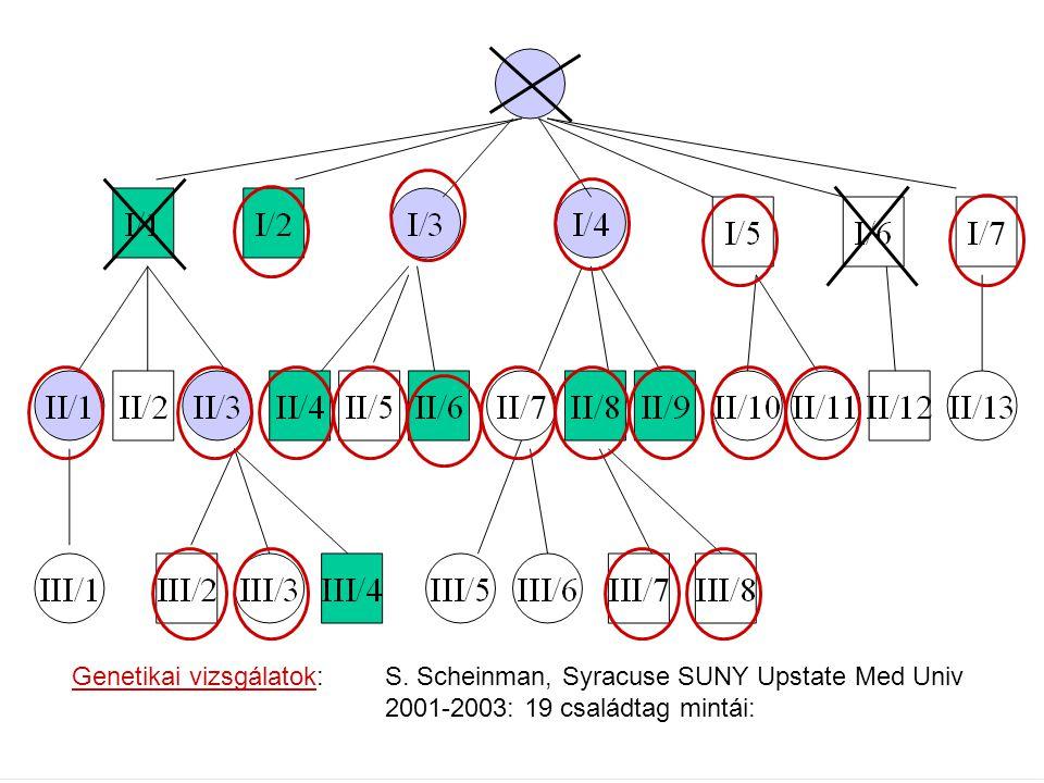 Genetikai vizsgálatok: S. Scheinman, Syracuse SUNY Upstate Med Univ 2001-2003: 19 családtag mintái: