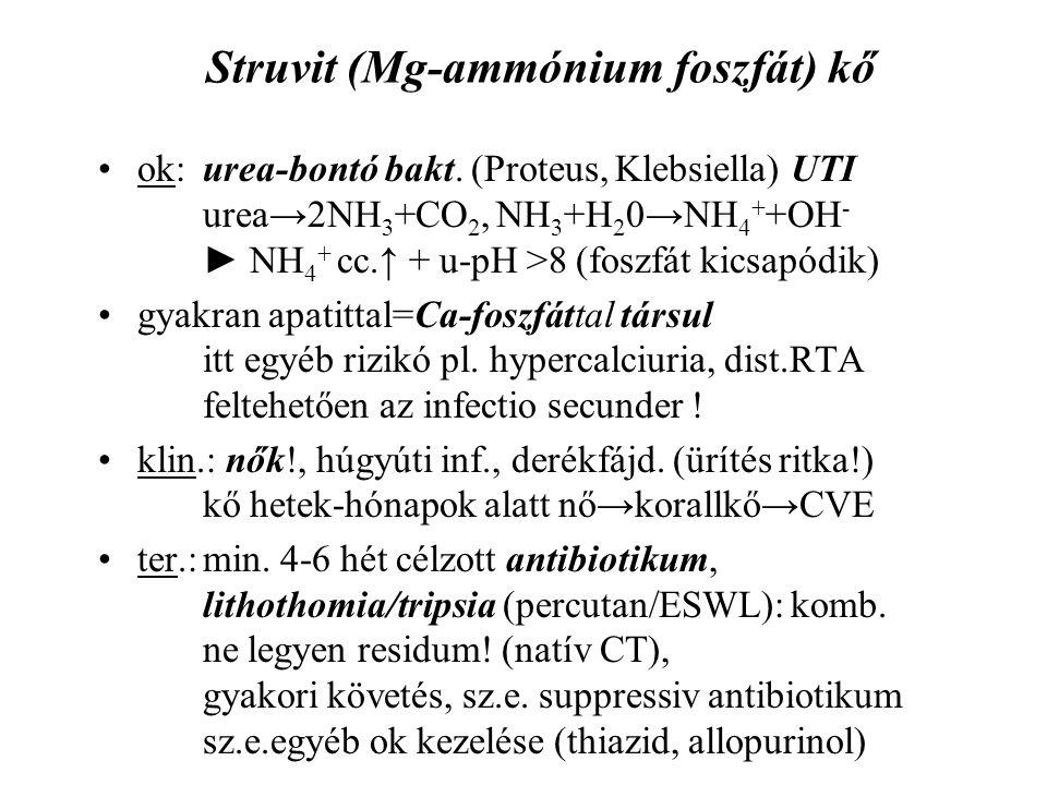 Struvit (Mg-ammónium foszfát) kő ok: urea-bontó bakt. (Proteus, Klebsiella) UTI urea→2NH 3 +CO 2, NH 3 +H 2 0→NH 4 + +OH - ► NH 4 + cc.↑ + u-pH >8 (fo