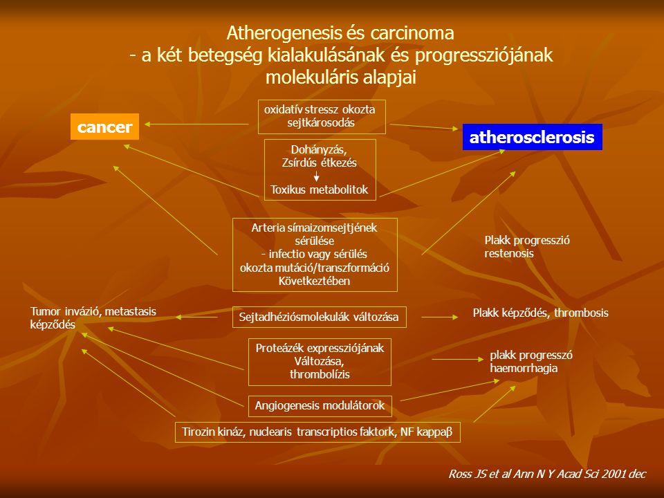 Atherogenesis és carcinoma - a két betegség kialakulásának és progressziójának molekuláris alapjai oxidatív stressz okozta sejtkárosodás Dohányzás, Zs