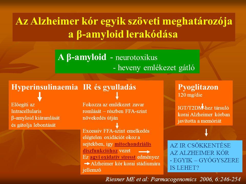 Az Alzheimer kór egyik szöveti meghatározója a β-amyloid lerakódása A β-amyloid - neurotoxikus - heveny emlékezet gátló Hyperinsulinaemia Előegíti az