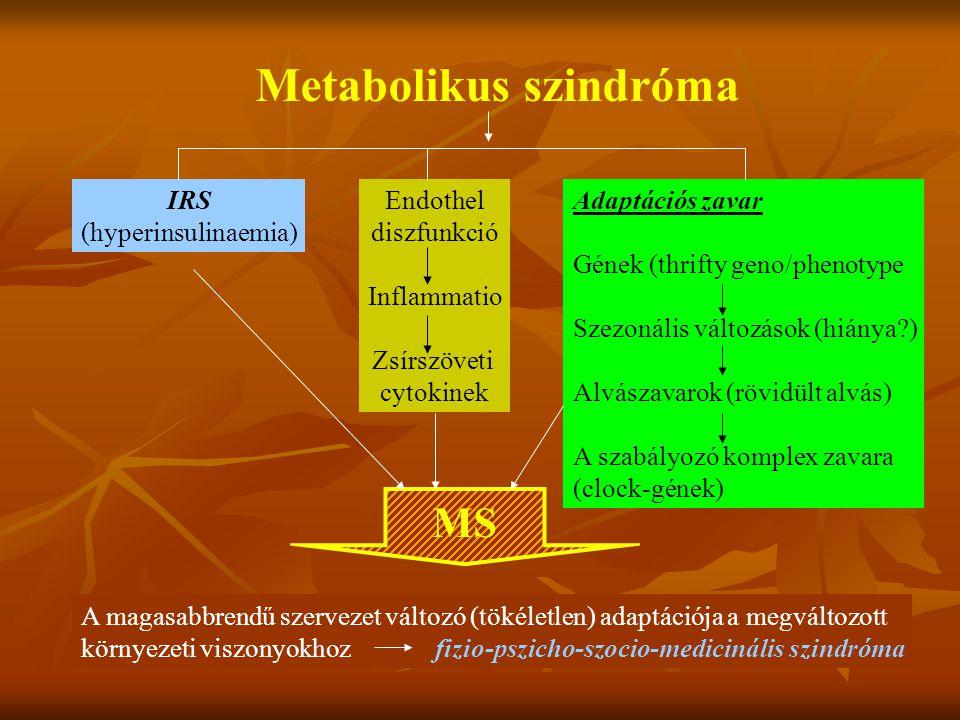 Metabolikus szindróma: definició - civilizációs népbetegség, genetikus prediszpozició talaján helytelen táplálkozás és mozgásszegény életmód hatására - lappangva, tünetszegényen kialakuló progresszív anyagcsere- zavar ( atherogén dyslipidaemia, glukóz intolerancia, alvadási zavarok), - hypertonia, alma tipusú elhízás, - hyperinsulinismus és insulinresistentia talaján, - atheroscleroticus elváltozásokat okoz - korai cardiovascularis halálozás (MDT metabolikus munkacsoportja, Parádsasvári Konszenzus, 2001.