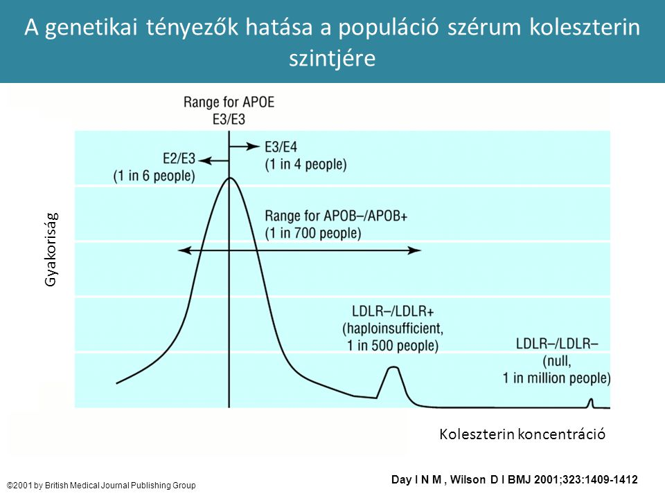 Day I N M, Wilson D I BMJ 2001;323:1409-1412 ©2001 by British Medical Journal Publishing Group A genetikai tényezők hatása a populáció szérum koleszte