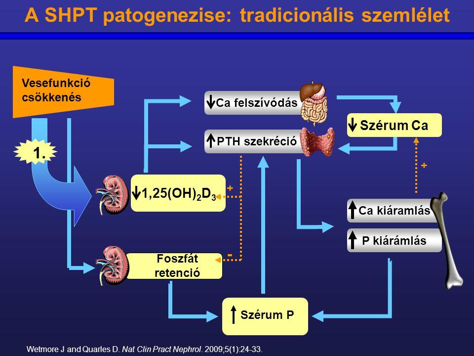 1,25(OH) 2 D 3 A SHPT patogenezise: tradicionális szemlélet Wetmore J and Quarles D. Nat Clin Pract Nephrol. 2009;5(1):24-33. Ca kiáramlás P kiárámlás