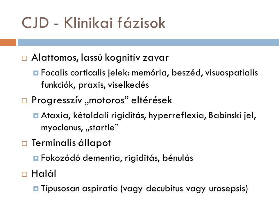 """CJD - Klinikai fázisok  Alattomos, lassú kognitív zavar  Focalis corticalis jelek: memória, beszéd, visuospatialis funkciók, praxis, viselkedés  Progresszív """"motoros eltérések  Ataxia, kétoldali rigiditás, hyperreflexia, Babinski jel, myoclonus, """"startle  Terminalis állapot  Fokozódó dementia, rigiditás, bénulás  Halál  Típusosan aspiratio (vagy decubitus vagy urosepsis)"""