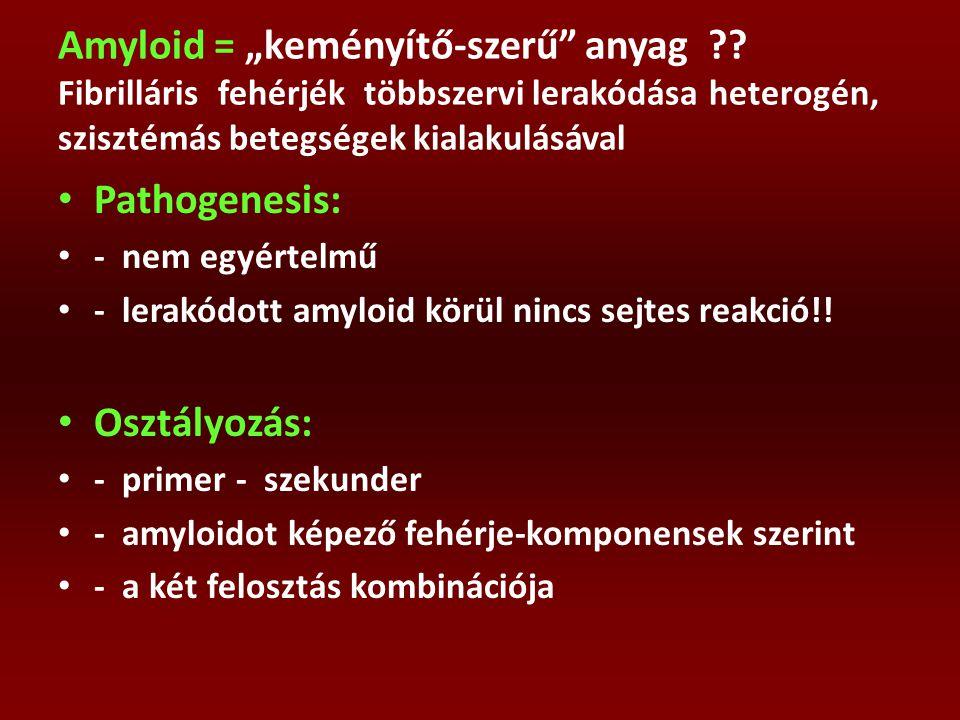 """Amyloid = """"keményítő-szerű"""" anyag ?? Fibrilláris fehérjék többszervi lerakódása heterogén, szisztémás betegségek kialakulásával Pathogenesis: - nem eg"""