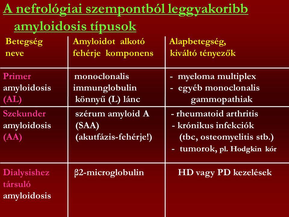 Szekunder szérum amyloid A - rheumatoid arthritis amyloidosis (SAA) - krónikus infekciók (AA) (akutfázis-fehérje!) (tbc, osteomyelitis stb.) - tumorok, pl.