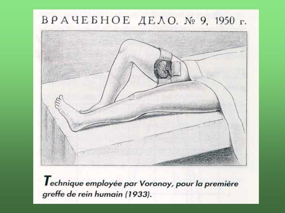 1945Willem J. Kolff - művese
