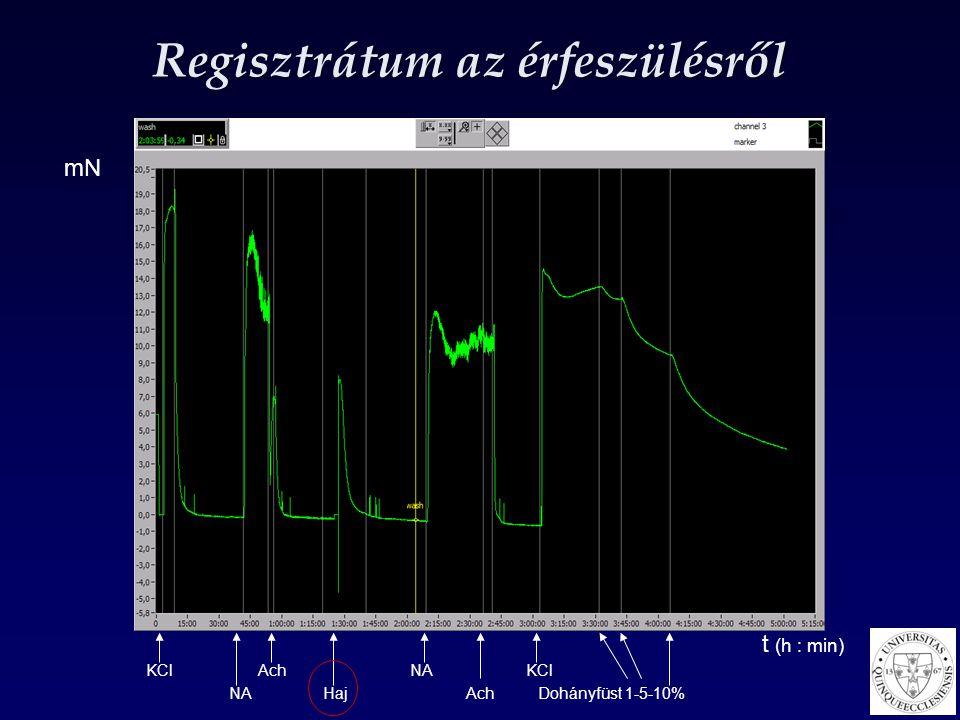 Regisztrátum az érfeszülésről KCl Ach NA KCl NA Haj Ach Dohányfüst 1-5-10% mN t (h : min)