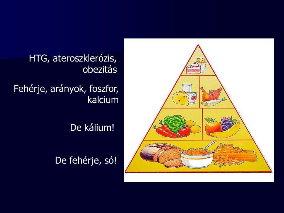 De fehérje, só! De kálium! Fehérje, arányok, foszfor, kalcium HTG, ateroszklerózis, obezitás