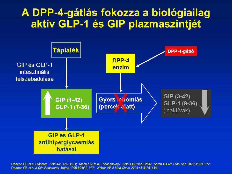 A DPP-4-gátlás fokozza a biológiailag aktív GLP-1 és GIP plazmaszintjét Deacon CF et al Diabetes 1995;44:1126–1131; Kieffer TJ et al Endocrinology 1995;136:3585–3596; Ahrén B Curr Diab Rep 2003;3:365–372; Deacon CF et al J Clin Endocrinol Metab 1995;80:952–957; Weber AE J Med Chem 2004;47:4135–4141.