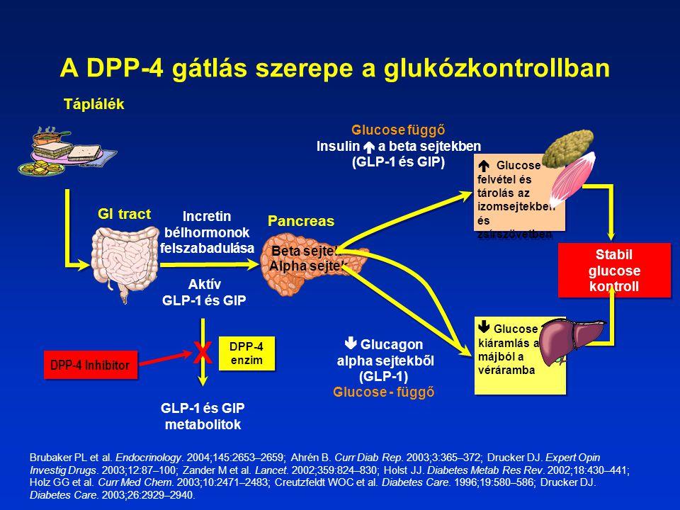 X DPP-4 Inhibitor GLP-1 és GIP metabolitok DPP-4 enzim Aktív GLP-1 és GIP Incretin bélhormonok felszabadulása Pancreas Stabil glucose kontroll GI tract  Glucagon alpha sejtekből (GLP-1) Glucose - függő  Glucose kiáramlás a májból a véráramba Alpha sejtek  Glucose felvétel és tárolás az izomsejtekben és zsírszövetben Glucose függő Insulin  a beta sejtekben (GLP-1 és GIP) Beta sejtek Táplálék A DPP-4 gátlás szerepe a glukózkontrollban Brubaker PL et al.
